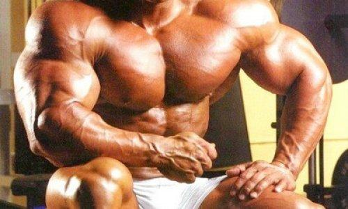 knoblauch testosteron