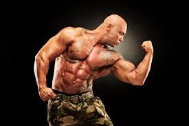 Steroide für den Körper