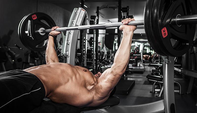 trainingsprogramm für den muskelaufbau