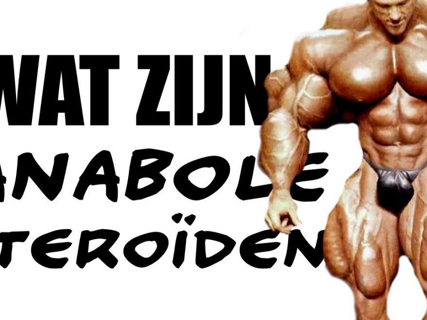 anabolen Steroiden